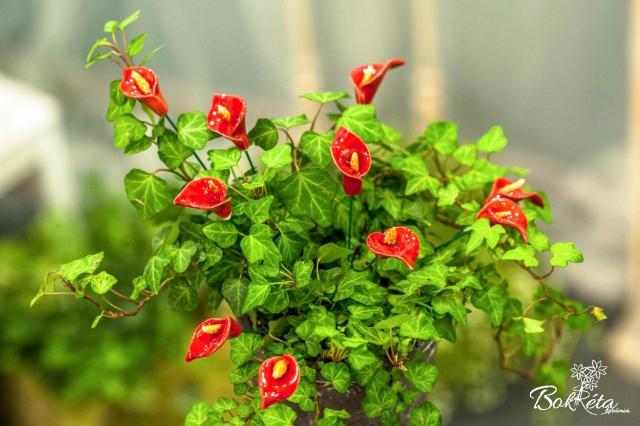Ceramic flower: Little Calla