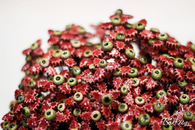 Ceramic flower: Claret Mini Holly Special Offer 5pcs