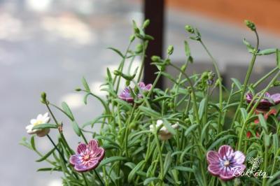 Kerámia virágok